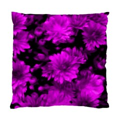 Phenomenal Blossoms Hot  Pink Standard Cushion Case (one Side)