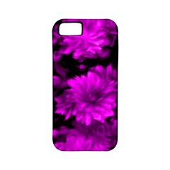 Phenomenal Blossoms Hot  Pink Apple Iphone 5 Classic Hardshell Case (pc+silicone)