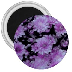 Phenomenal Blossoms Lilac 3  Magnets by MoreColorsinLife
