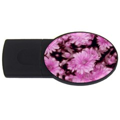 Phenomenal Blossoms Pink USB Flash Drive Oval (1 GB)  by MoreColorsinLife