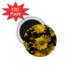 Phenomenal Blossoms Yellow 1 75  Magnets (100 Pack)  by MoreColorsinLife