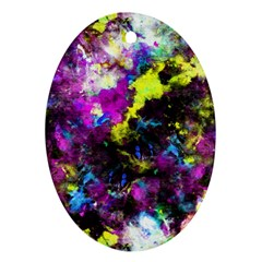 Colour Splash G264 Oval Ornament (two Sides) by MedusArt