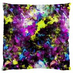 Colour Splash G264 Large Flano Cushion Cases (one Side)  by MedusArt
