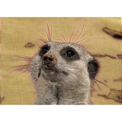 Meerkat 2 Birthday Cake 3d Greeting Card (7x5)