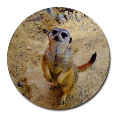 Lovely Meerkat 515p Round Mousepads by ImpressiveMoments