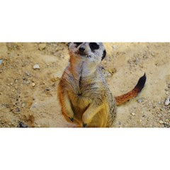 Lovely Meerkat 515p You Are Invited 3d Greeting Card (8x4)