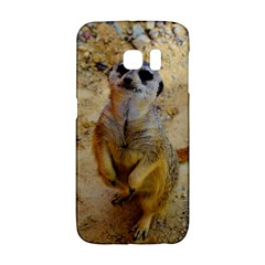 Lovely Meerkat 515p Galaxy S6 Edge by ImpressiveMoments