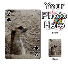 Adorable Meerkat Playing Cards 54 Designs  by ImpressiveMoments