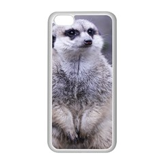 Adorable Meerkat 03 Apple Iphone 5c Seamless Case (white) by ImpressiveMoments