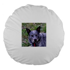 Australian Cattle Dog Blue Large 18  Premium Flano Round Cushions by TailWags