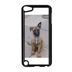 Malinois Puppy Sitting Apple iPod Touch 5 Case (Black) by TailWags