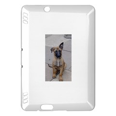 Malinois Puppy Sitting Kindle Fire HDX Hardshell Case by TailWags