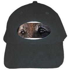 Belgian Tervueren Eyes Black Cap