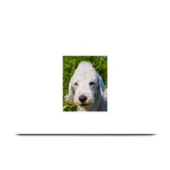 Bedlington Terrier Plate Mats by TailWags