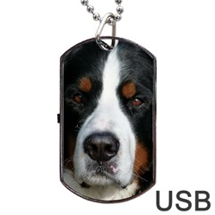 Bernese Mountain Dog Dog Tag Usb Flash (one Side) by TailWags