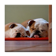2 Sleeping Bulldogs Tile Coasters by TailWags