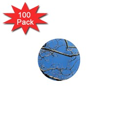 Leafless Tree Branches Against Blue Sky 1  Mini Magnets (100 Pack)  by dflcprints
