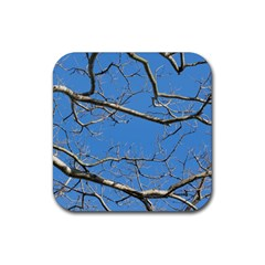 Leafless Tree Branches Against Blue Sky Rubber Square Coaster (4 Pack)  by dflcprints