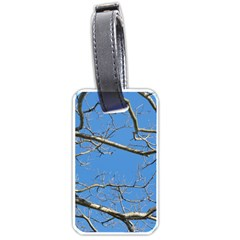 Leafless Tree Branches Against Blue Sky Luggage Tags (two Sides) by dflcprints