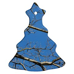Leafless Tree Branches Against Blue Sky Ornament (christmas Tree) by dflcprints