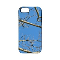 Leafless Tree Branches Against Blue Sky Apple Iphone 5 Classic Hardshell Case (pc+silicone) by dflcprints