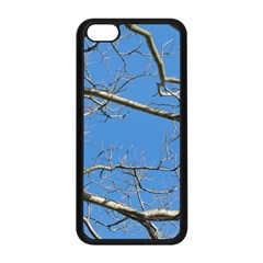 Leafless Tree Branches Against Blue Sky Apple Iphone 5c Seamless Case (black) by dflcprints