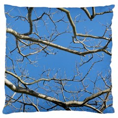 Leafless Tree Branches Against Blue Sky Standard Flano Cushion Cases (one Side)  by dflcprints