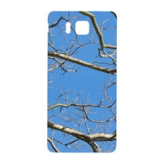 Leafless Tree Branches Against Blue Sky Samsung Galaxy Alpha Hardshell Back Case by dflcprints