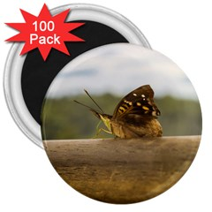 Butterfly Against Blur Background At Iguazu Park 3  Magnets (100 Pack) by dflcprints