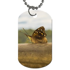 Butterfly Against Blur Background At Iguazu Park Dog Tag (one Side) by dflcprints