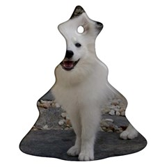American Eskimo Dog Full Christmas Tree Ornament (2 Sides) by TailWags