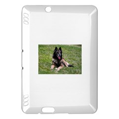 Belgian Tervuren Laying Kindle Fire HDX Hardshell Case by TailWags