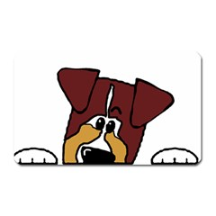 Red Tri Peeping  Aussie Dog Magnet (Rectangular) by TailWags