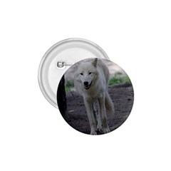 White Wolf 1 75  Buttons by MoreColorsinLife