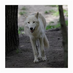 White Wolf Medium Glasses Cloth (2 Side)
