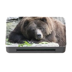 Tired Bear Memory Card Reader with CF by MoreColorsinLife