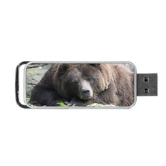 Tired Bear Portable Usb Flash (two Sides) by MoreColorsinLife