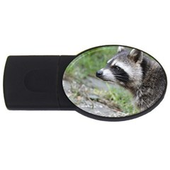 Racoon 1115 Usb Flash Drive Oval (4 Gb)  by MoreColorsinLife