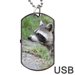 Racoon 1115 Dog Tag USB Flash (Two Sides)  by MoreColorsinLife