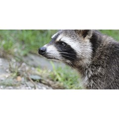 Racoon 1115 You Are Invited 3d Greeting Card (8x4)