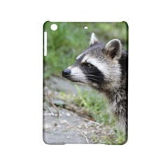 Racoon 1115 Ipad Mini 2 Hardshell Cases by MoreColorsinLife