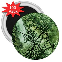 Jungle View At Iguazu National Park 3  Magnets (100 Pack) by dflcprints