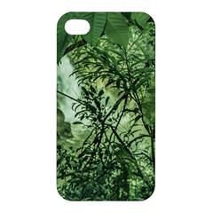 Jungle View At Iguazu National Park Apple Iphone 4/4s Hardshell Case by dflcprints