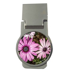 Beautiful Colourful African Daisies  Money Clips (round)