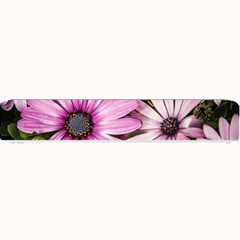 Beautiful Colourful African Daisies  Small Bar Mats by OZMedia