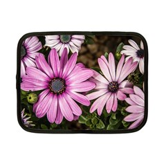 Beautiful Colourful African Daisies  Netbook Case (small)  by OZMedia