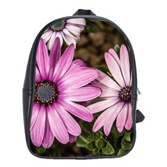 Beautiful Colourful African Daisies  School Bags(large)  by OZMedia