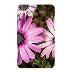 Beautiful Colourful African Daisies  Memory Card Reader by OZMedia