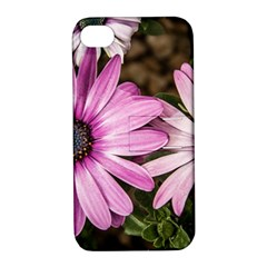 Beautiful Colourful African Daisies  Apple Iphone 4/4s Hardshell Case With Stand by OZMedia