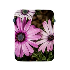 Beautiful Colourful African Daisies  Apple Ipad 2/3/4 Protective Soft Cases by OZMedia
